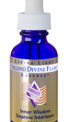 Second Divine Flame - Inner wisdom